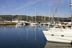 Harbour with luxury yachts Royalty Free Stock Images