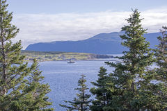 Harbour in Northwest Newfoundland Royalty Free Stock Images