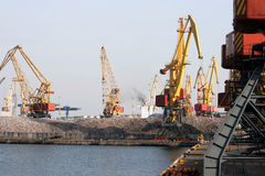 Harbour of sea trading port with cargo cranes Royalty Free Stock Photos