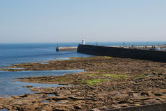 Harbour at Seahouses on hazy summer day. Harbour wall and entrance at Seahouses Northumberland Royalty Free Stock Photography