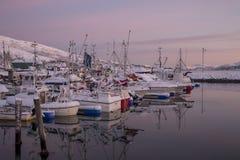 Harbour at Senja Island Royalty Free Stock Image