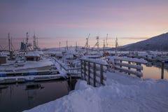 Harbour at Senja Island Stock Image