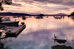 Harbour at sunset, Victoria, BC, Canada Stock Images