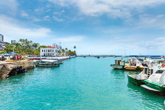 Harbour view of Salvador, Bahia, Brazil.  stock images