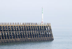 Harbour wall at Newhaven. East Sussex. UK Stock Photo