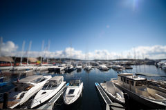 Harbour with yachts Stock Images