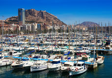 Harbour with yachts and Castle. Alicante Stock Image