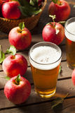 Hard Apple Cider Ale Royalty Free Stock Photography