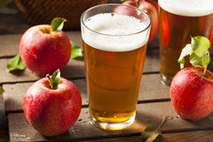 Hard Apple Cider Ale. Ready to Drink Stock Images