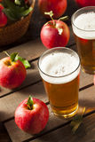 Hard Apple Cider Ale. Ready to Drink Royalty Free Stock Photos