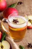Hard apple cider with cinnamon stick and apple slice Stock Photos