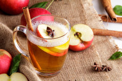 Hard apple cider with cinnamon stick and apple slice Royalty Free Stock Images