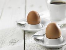 Hard boil egg Stock Image