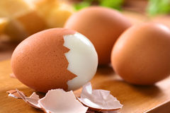 Hard Boiled Egg Stock Image