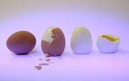 Hard boiled eggs. A series of hard boiled eggs Stock Photo