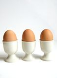 Hard Boiled Eggs. Three hard boiled breakfast eggs great source of omega 3 in the diet Royalty Free Stock Images