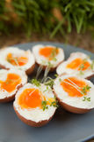 Hard- boiled eggs Stock Photography