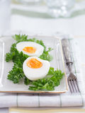 Hard-boiled eggs with parsley Royalty Free Stock Photos
