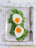 Hard-boiled eggs with parsley Royalty Free Stock Photography
