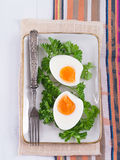 Hard-boiled eggs with parsley Stock Images