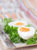 Hard-boiled eggs with parsley Royalty Free Stock Images