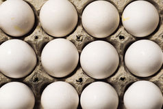 A carton of white eggs  Stock Image