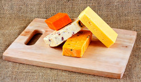 English hard cheese Stock Image