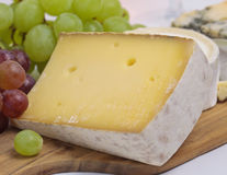 Hard cheese close up Stock Image