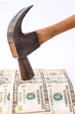 Hard currency: the Dollar. royalty free stock photo