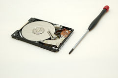 Hard disc and screwdriver Stock Image