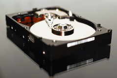 Hard disk 40GB Royalty Free Stock Images