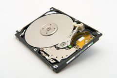 The hard disk royalty free stock photo