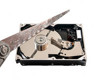 Hard disk cut with a hacksaw, on white background Royalty Free Stock Images