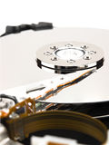 Hard Disk Drive. On white Stock Images