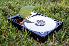 Free Hard Disk Drive With A Chia Leaf On The Grass Stock Photo - 219317550