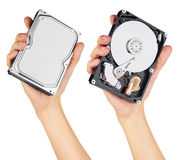 Hard disk in hand Royalty Free Stock Photos