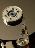 Hard disk head. Closeup of an hard disk head Stock Image