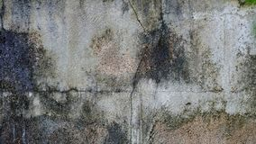 Damaged dirty cement ground floor with cracked on skin pattern royalty free stock images