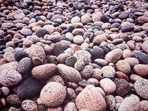Hard Greys. Speckled rocks by a Northern Canadian shore Stock Image
