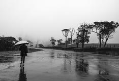 Hard het regenen Stock Foto