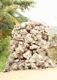 Hard koraal voor verkoop Royalty-vrije Stock Foto's