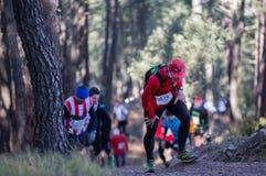 Hard marathon mountain race, climbing Royalty Free Stock Image