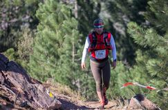 Hard mountain race, friends Stock Photography