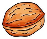 Hard nut. Huge hard brown nut illustration Royalty Free Stock Image