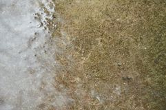 Hard rain drop and splashing on cement ground in park. Hard rain drop and splashing on cement ground in the park Stock Photos