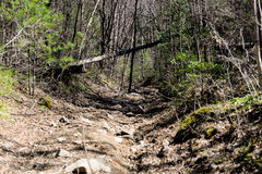 Hard road of stones. Mountain path, early sunny morning hard road of stones Royalty Free Stock Photo