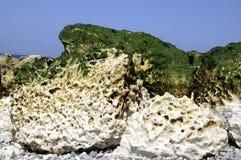 Hard rocks on the coast Stock Images