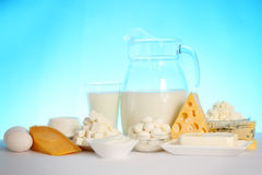 Hard and soft cheeses Stock Images