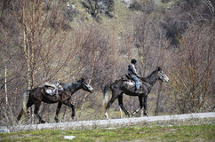 The hard way up to the mountains. Beutiful horses on nature in mountains of Kazakhstan with horseman in Spring Stock Photo