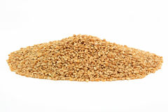 Hard Wheat Kernels. Royalty Free Stock Photo